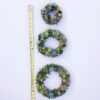 succulent wreath, holiday wreath, christmas wreath, holiday gift, living gift, succulents