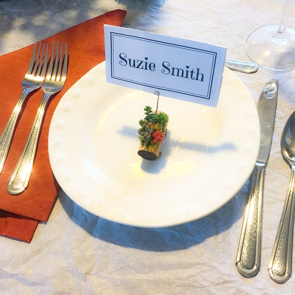 Succulent cork microgardens double as party favors and plate setting labels