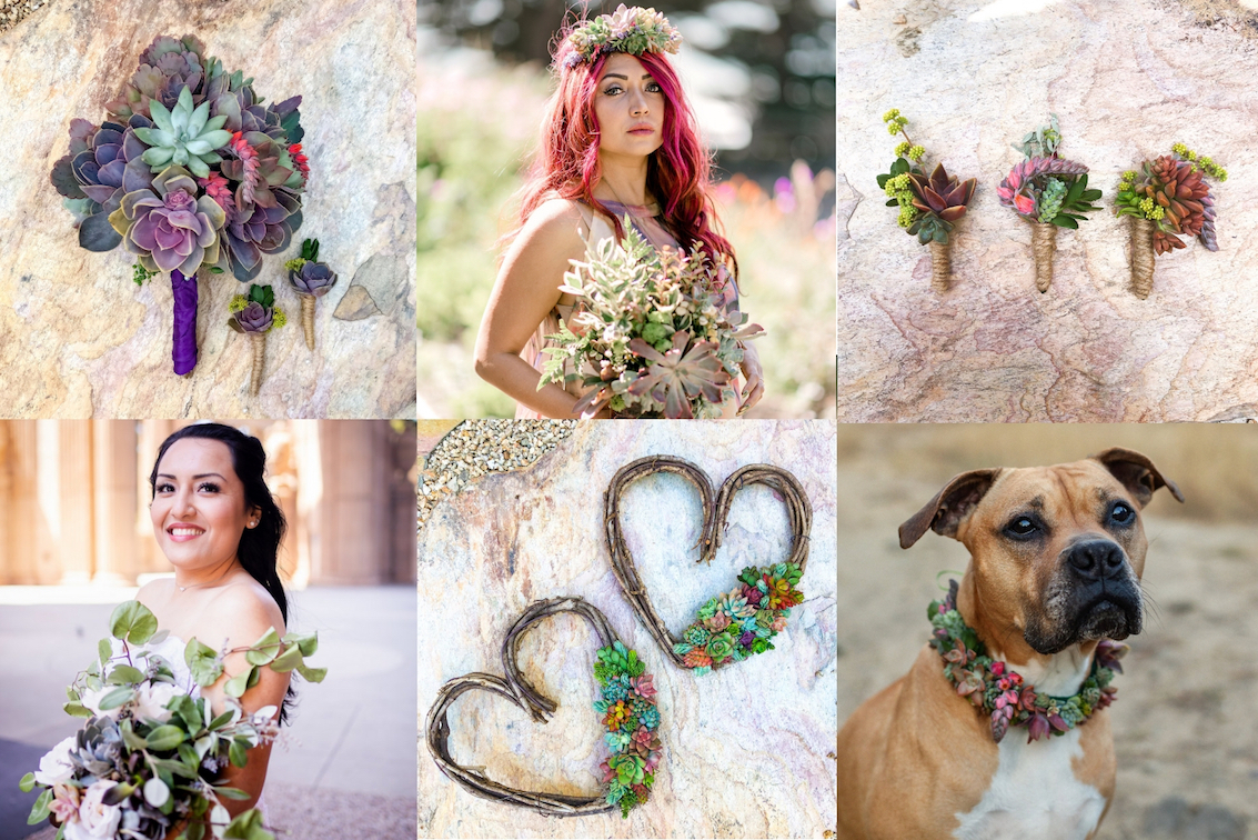 succulent Wedding designs