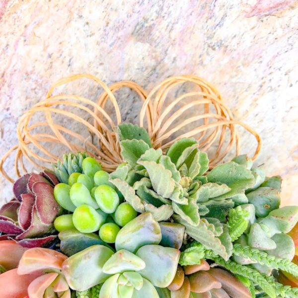 twine ribbon for succulent wreaths
