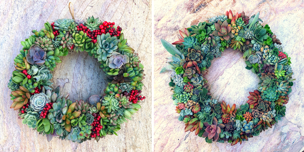 succulent wreath refurbish