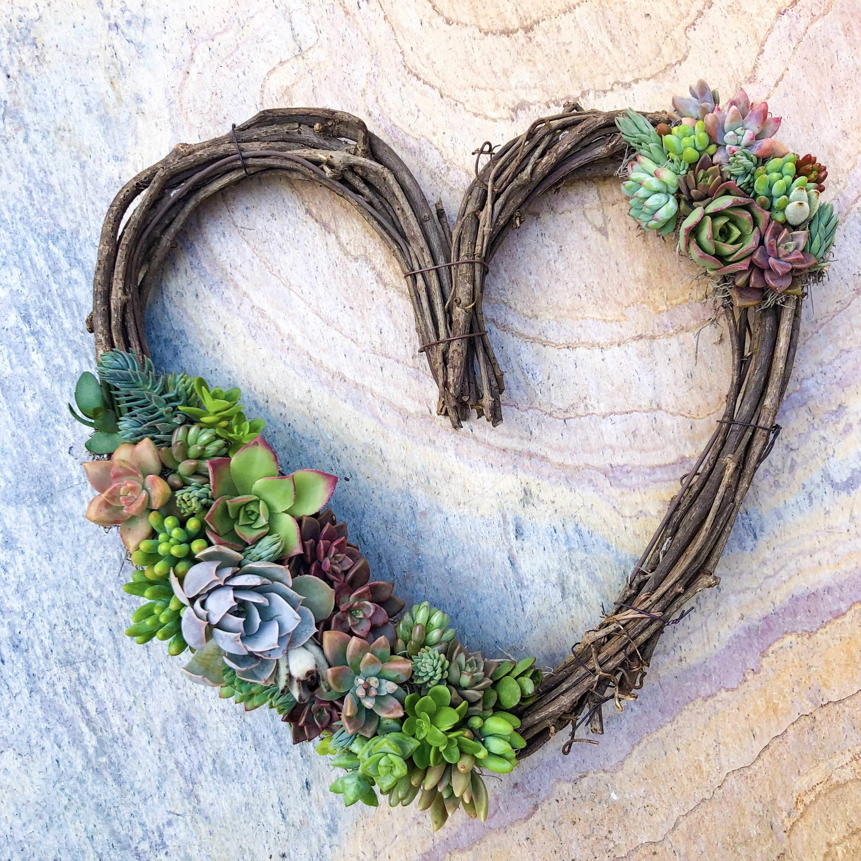 succulent heart valentine's day altar decor