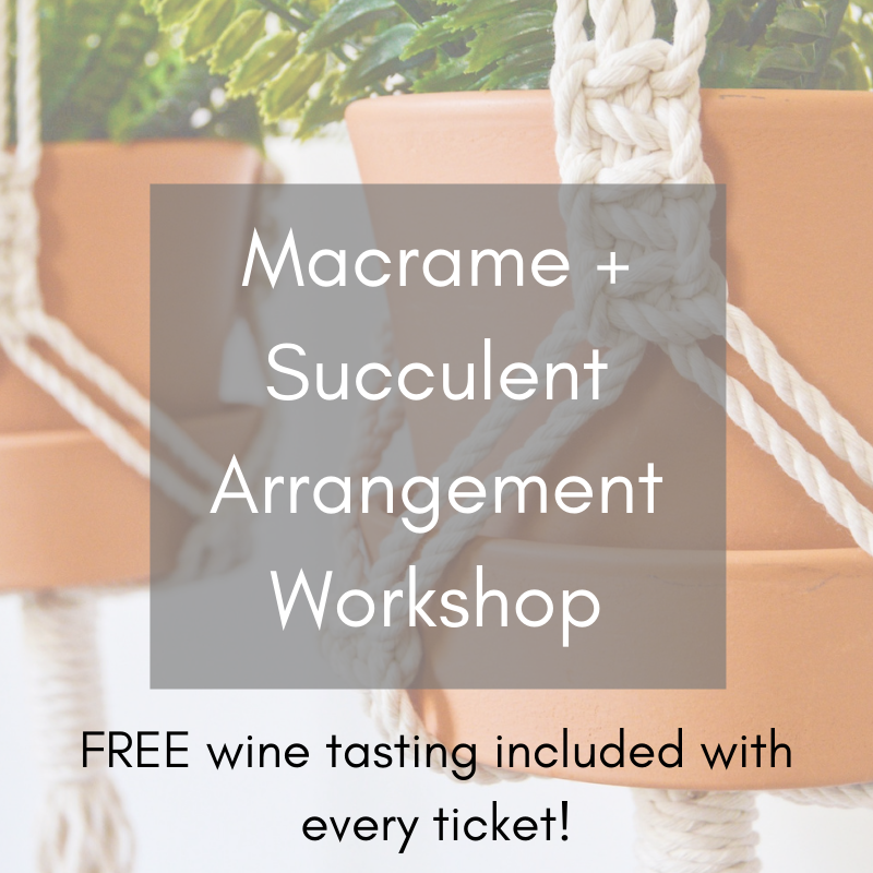 succulent workshoop macrame workshop berkeley