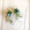 silver leaf with live succulent earrings.