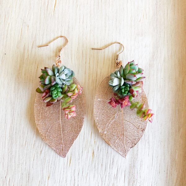 rose gold leaf with live succulent earrings