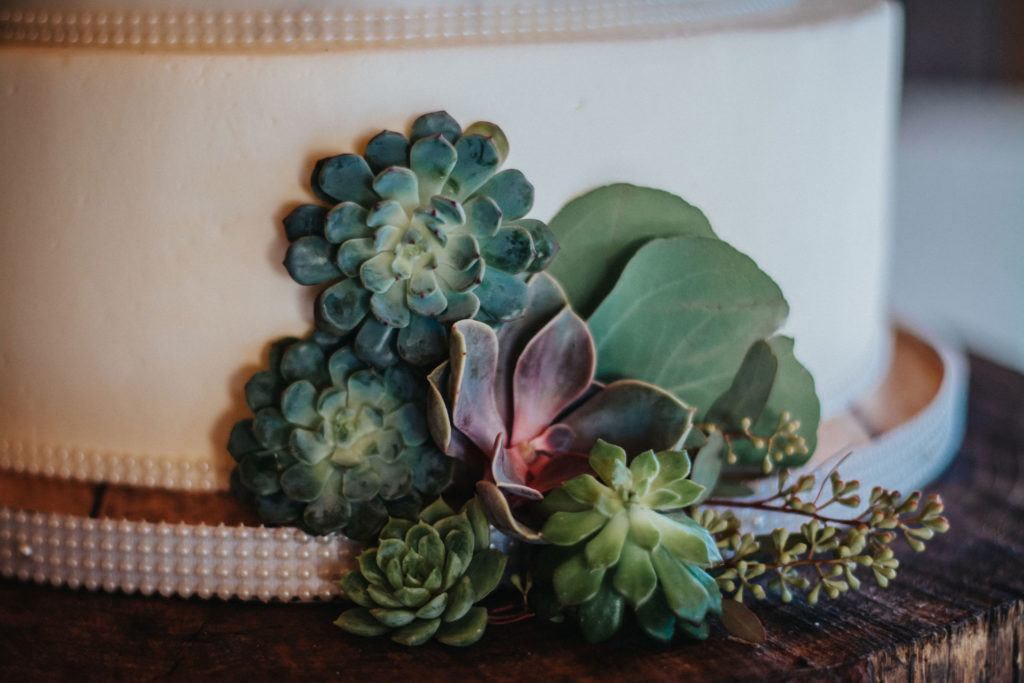 lesbian wedding gay wedding succulent wedding  succulent cake wedding cake decor