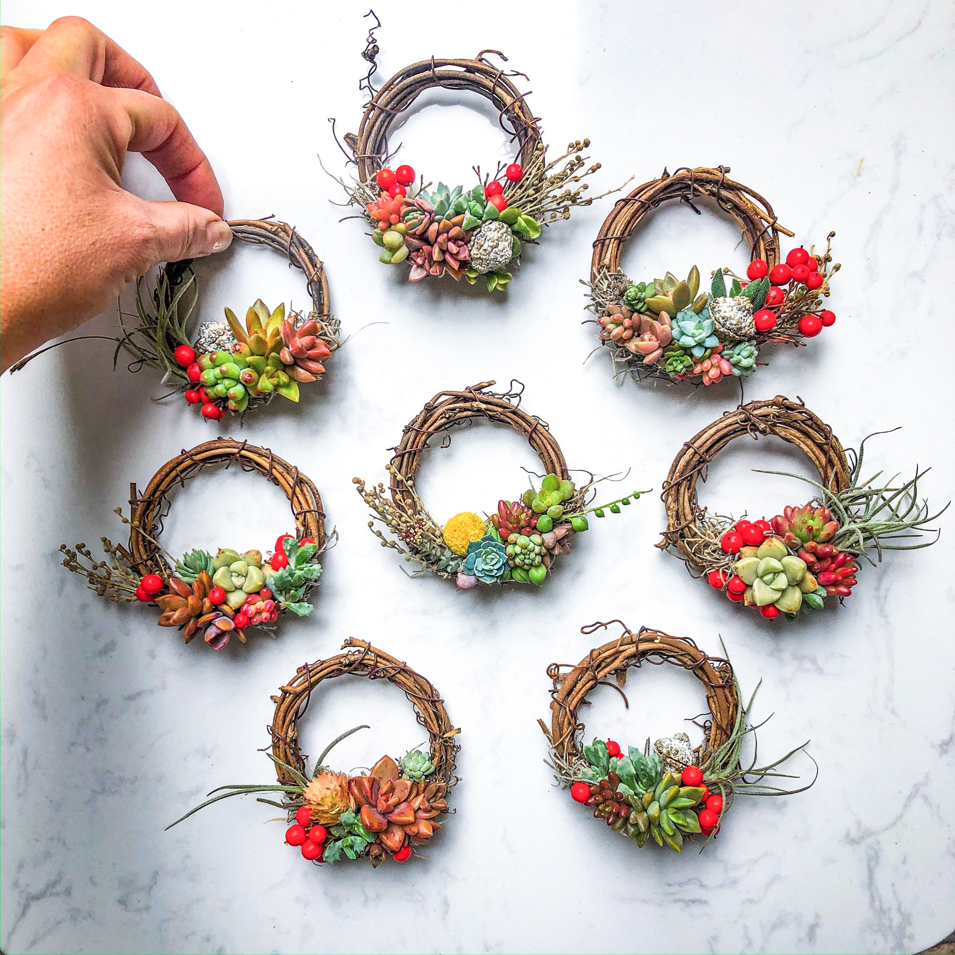 handmade mini-succulent wreath ornament for the Christmas holidays